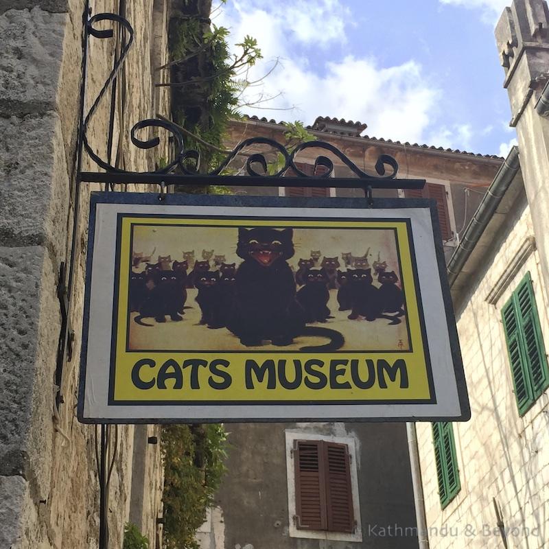 MontenegroKotorCatMuseum