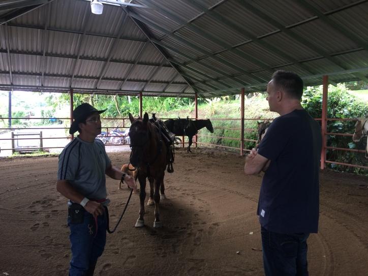 CostaRicaArenalLeavesLizardsEnriquehorses1
