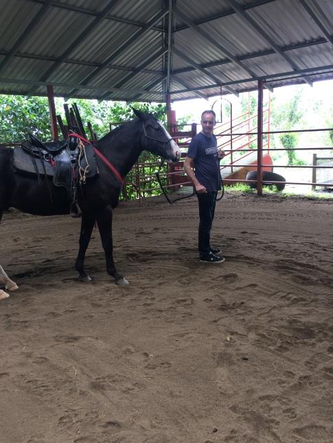 CostaRicaArenalLeavesLizardsEnriquehorses2