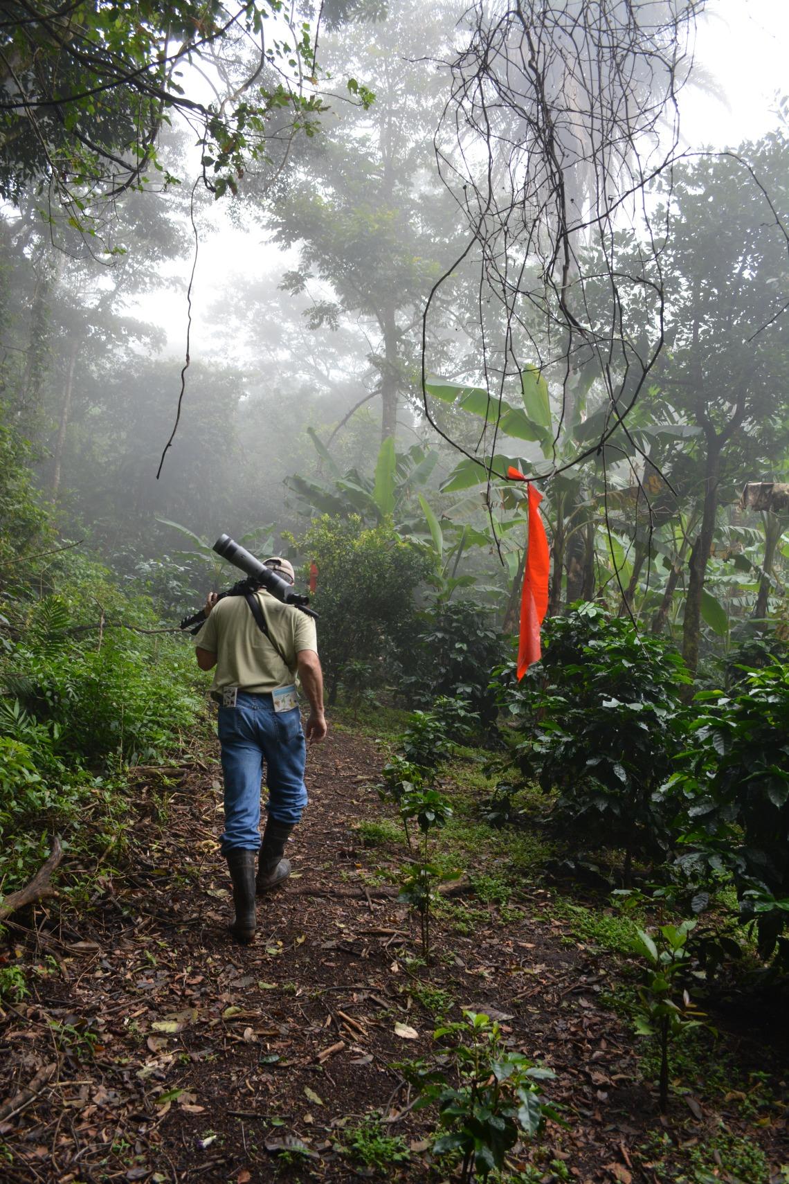 CostaRicaMonteverdeEcoSanctuary6
