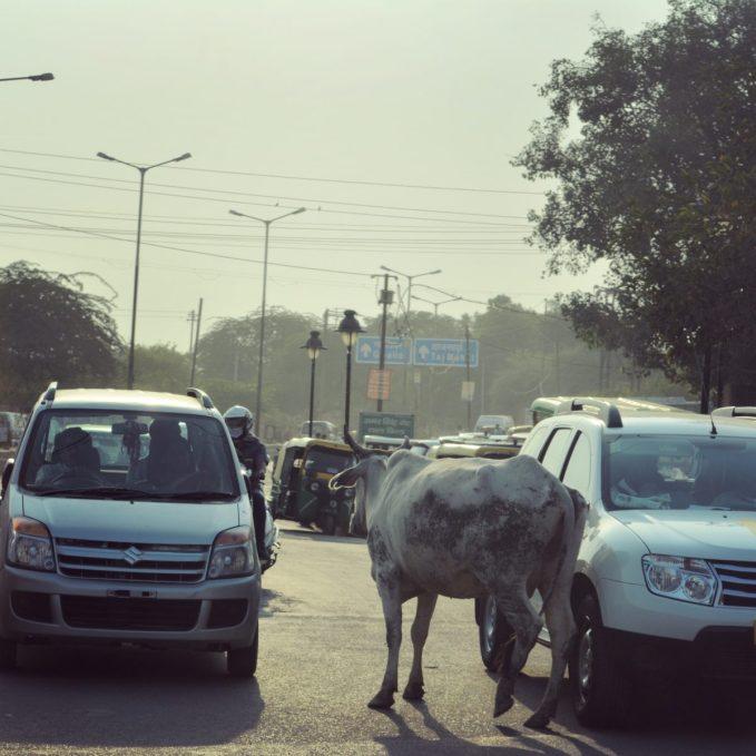 IndiaAgraStreetsOct2017-1INSTA