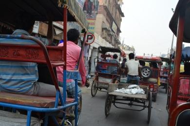 Delhi2017IndiaRickshawriding2