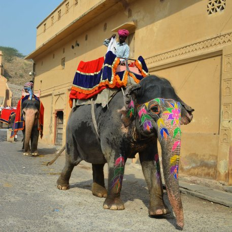 Jaipur2017Indiastreets7small