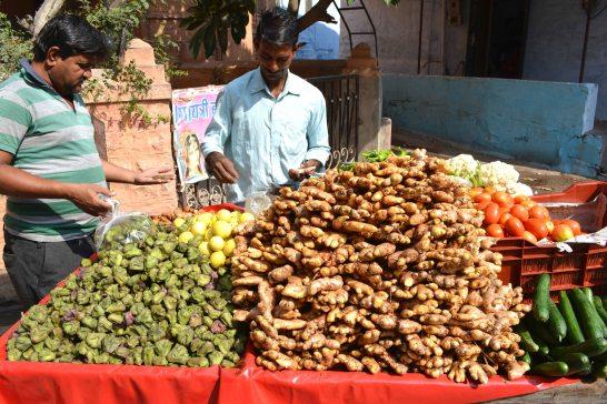 Jodhpur2017Indiastreets18small