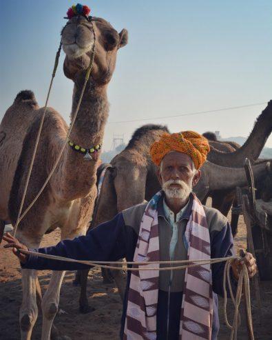IndiaPushkarCamelFairOct2017-3INSTA