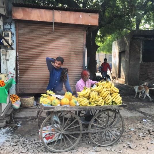 PushkartoUdaipur2017India5small