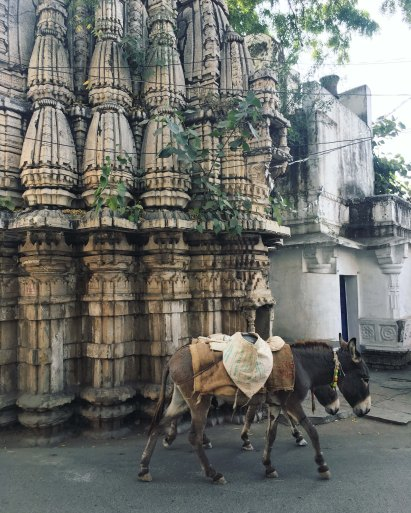 Udaipur2017India40small