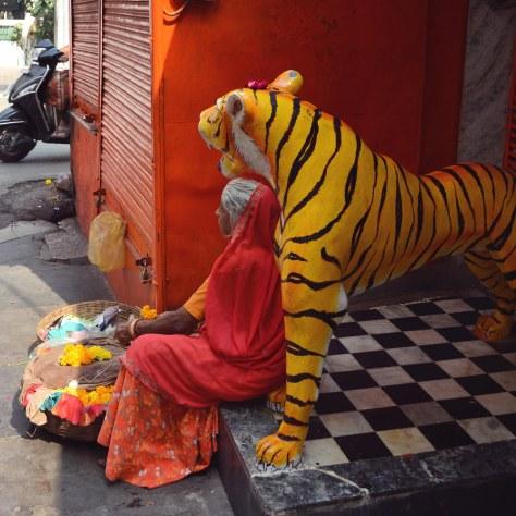 Udaipur2017India6INSTAsmall