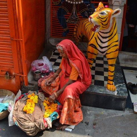 Udaipur2017India7INSTAsmall