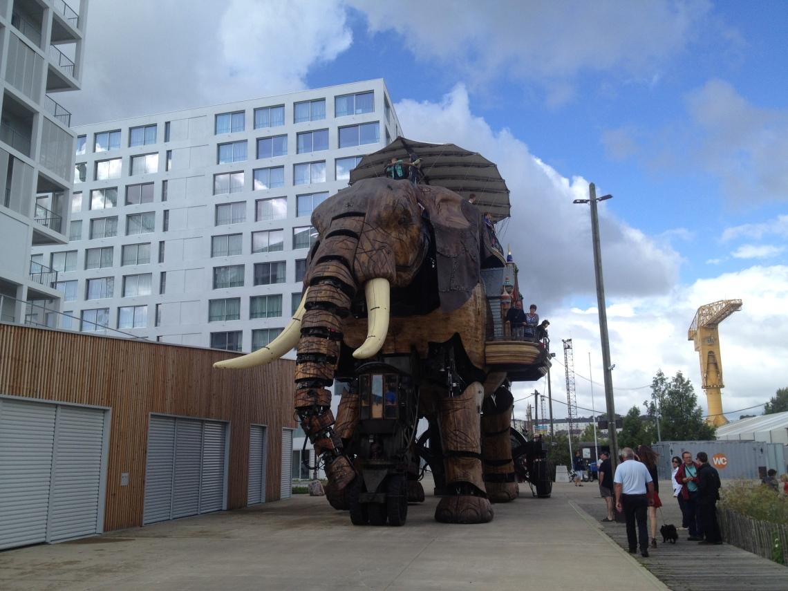 Nanteselephant2014-4